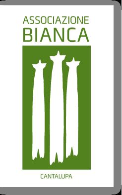 bg_content_logo.png